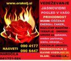 VEDEŽEVANJE-SVETOVANJE-POMOČ V STISKI NAROČILA 041751924