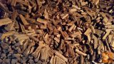 Prodam suha akacijeva drva - nasekana