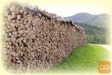 Kupim metrska bukova drva ali mešana