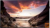 "Monitor Samsung PH55F 139,7 cm (55"") FULL HD LED"