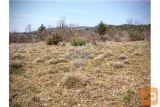 Gorjansko, Zazidljivo Zemljišče Na Robu Vasi 724 M