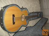 Bas kitara Epiphone Fretless Acoustic 5