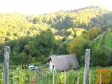 Slovenske Konjice okolica Zidanica 1500 m2